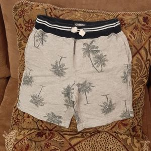 Oshkosh B'gosh toddler boys shorts size 4T